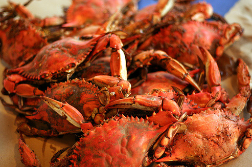 Seafood Market & Crab House for Sale!