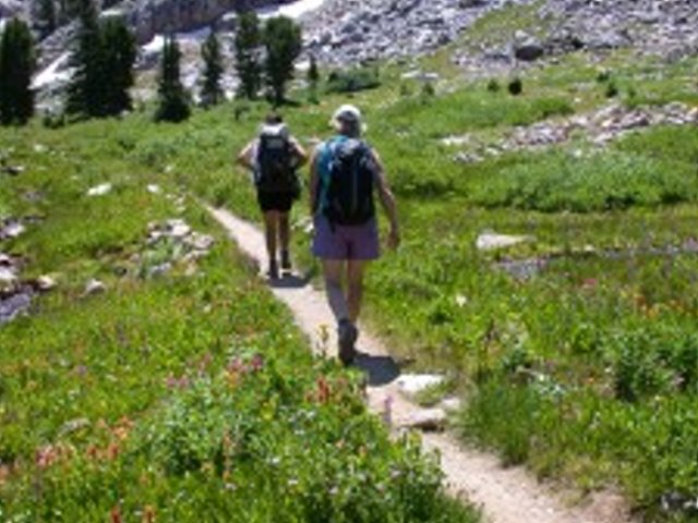 Guided Hiking and Outdoor Experiences