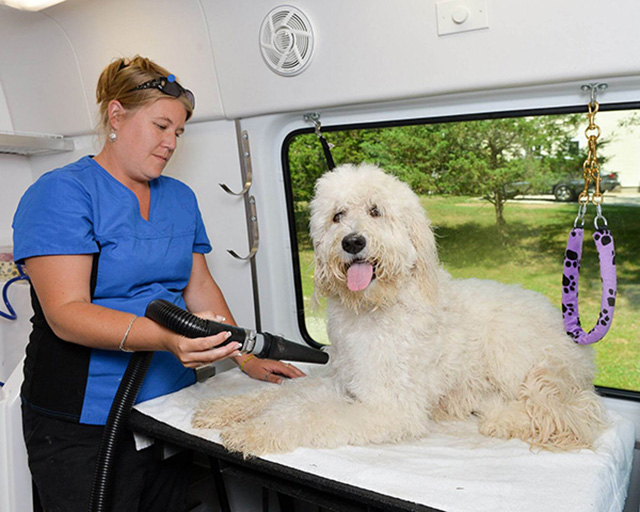 Growing Mobile Pet Grooming Franchise