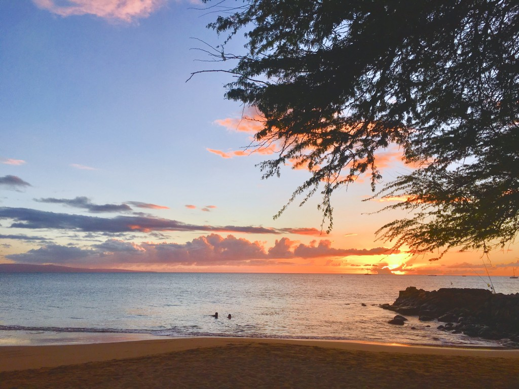 Maui Activity and Event Business