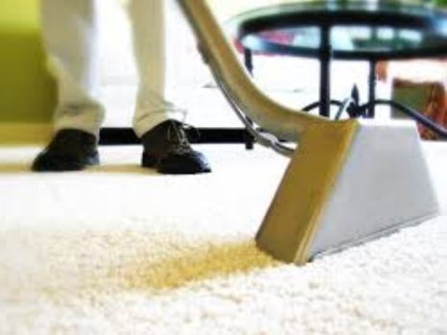 Reputable Carpet Cleaning Company