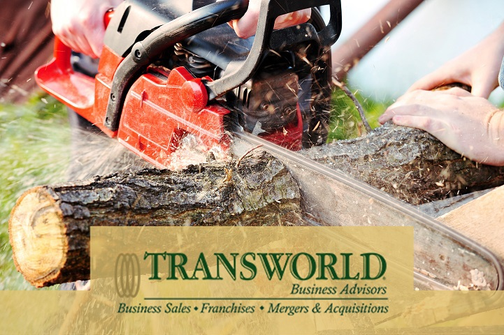Growing Tree Removal & Lawn Service