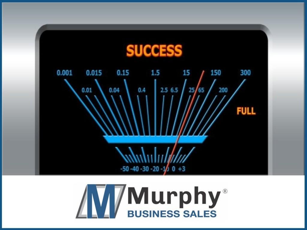 Georgia Businesses for Sale   MergerPlace com