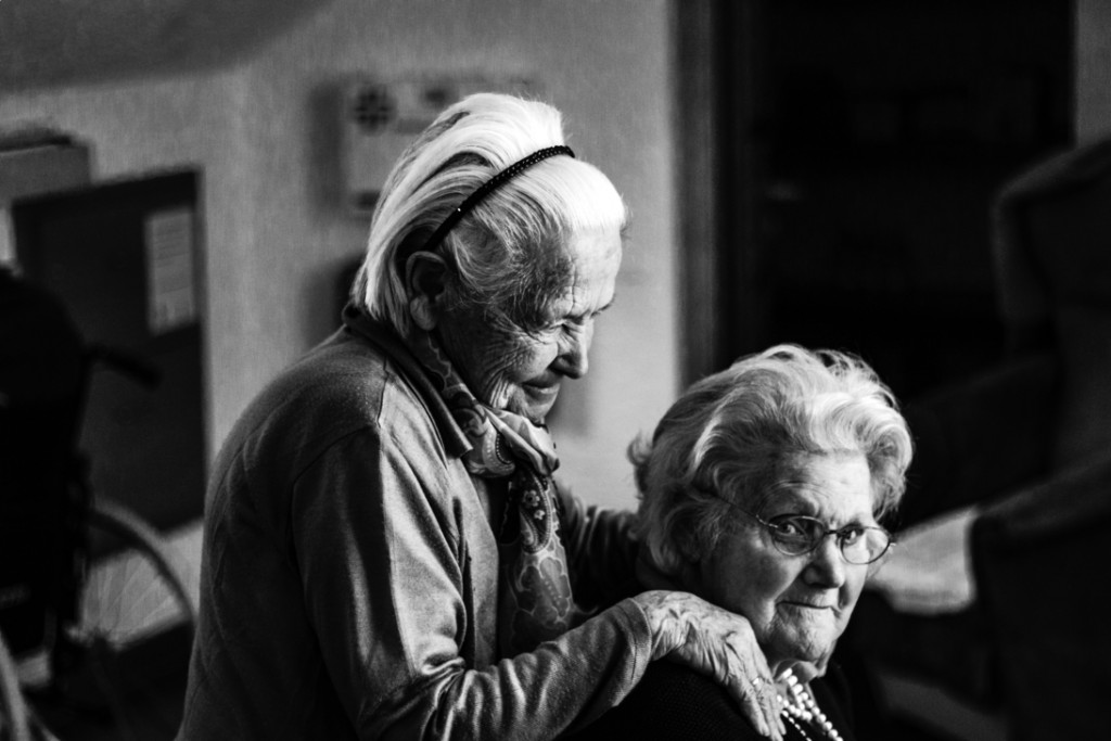 Seniors assisting seniors franchise