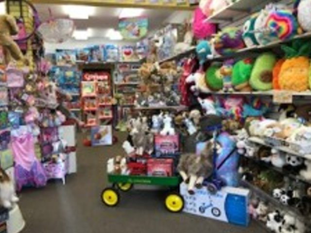 Established and Profitable Toy Store
