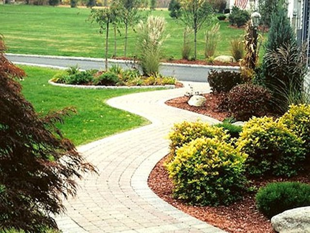 Tree Service and Landscaping business
