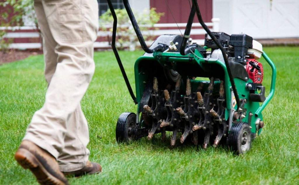 Landscaping & Yard Services Franchise