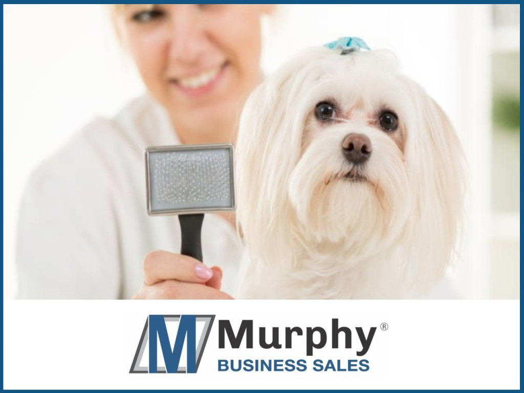 Professional Dog Grooming Business