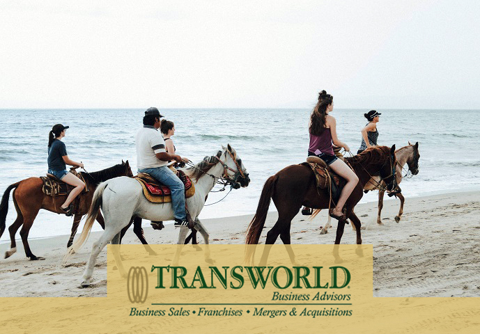 Manufacture and Retail of Horse Tack