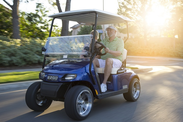 Profitable Golf Cart Vehicle Business