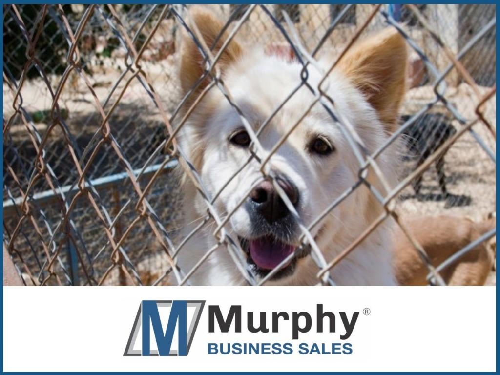 Pet Supplies Businesses for Sale | MergerPlace com