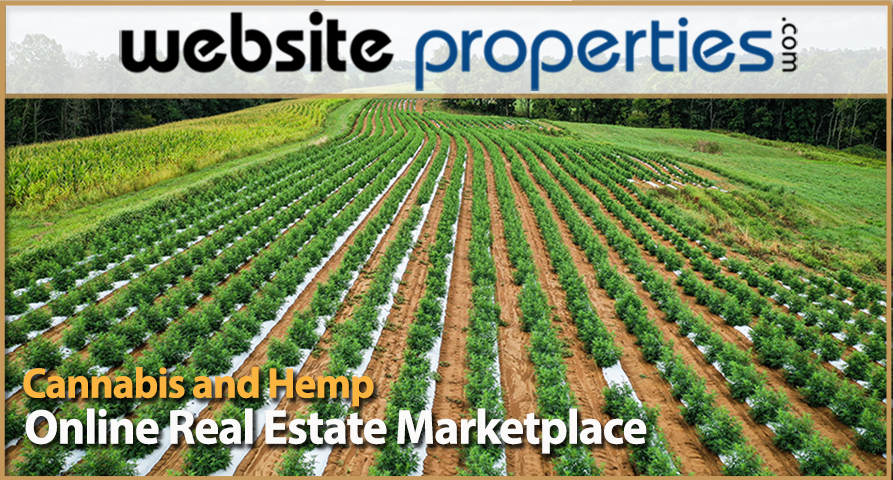 Cannabis and Hemp Real Estate Market