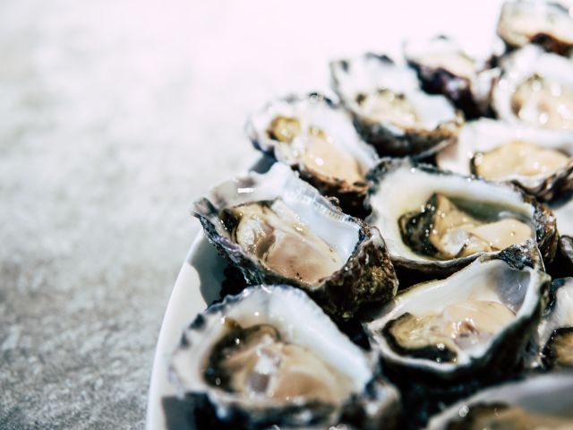 Oyster Bar Franchise in Eastern NC