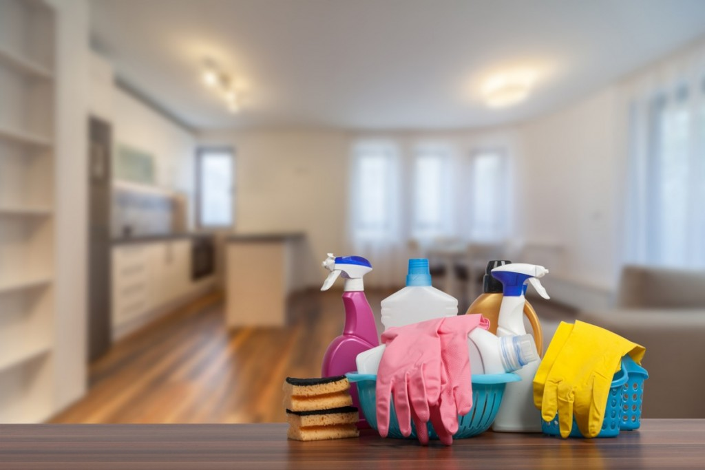 Profitable Residential Cleaning Business