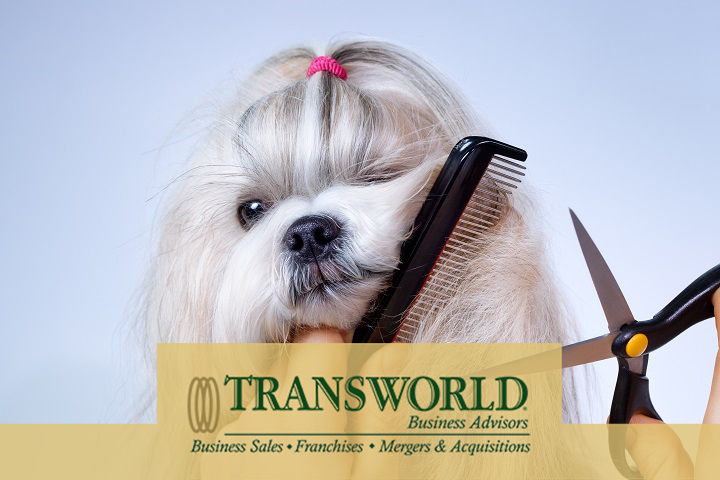Long Established Dog Grooming Business